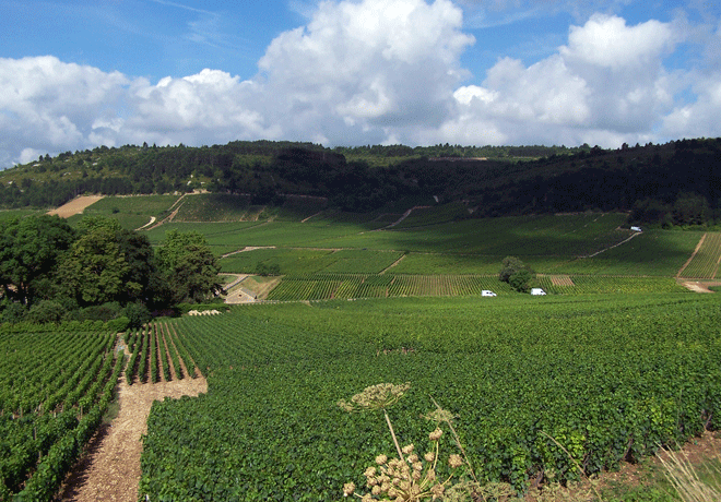 Les grands jours en Bourgogne